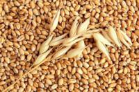 Пшеница 30 кг