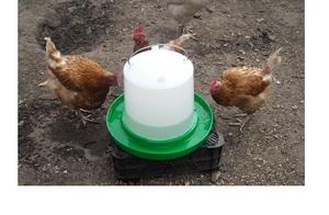 Поилка вакуумная для домашней птицы на 10 л воды